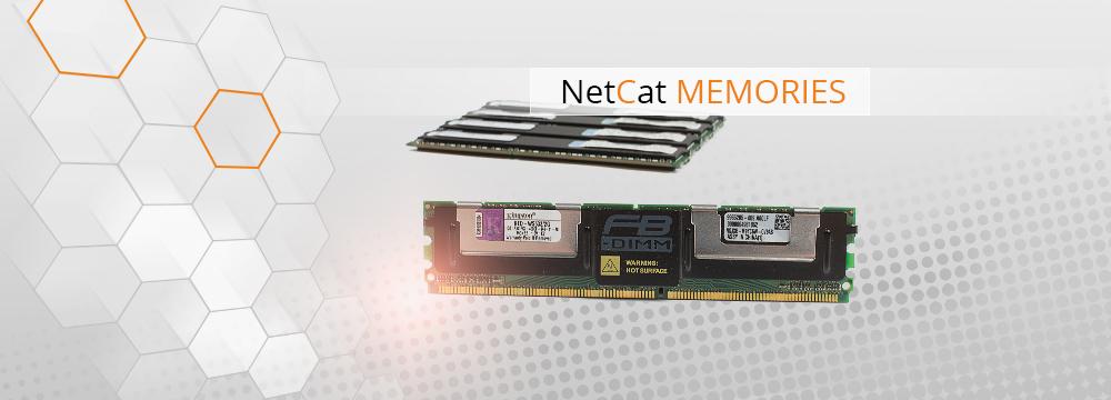 NetCat Memories
